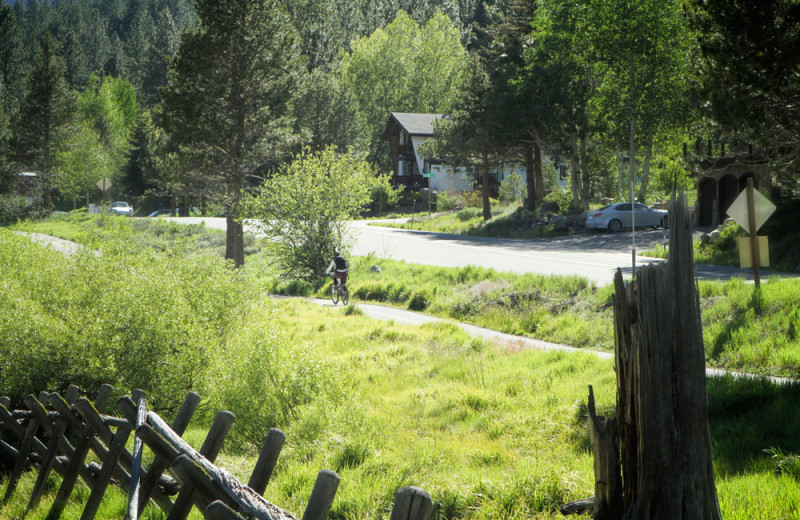 Walking/Cycling Paths in Olympic Valley, California