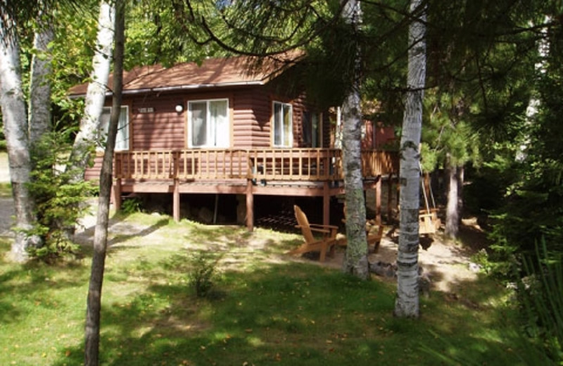 Exterior of cabin at Timber Trail Lodge & Resort.