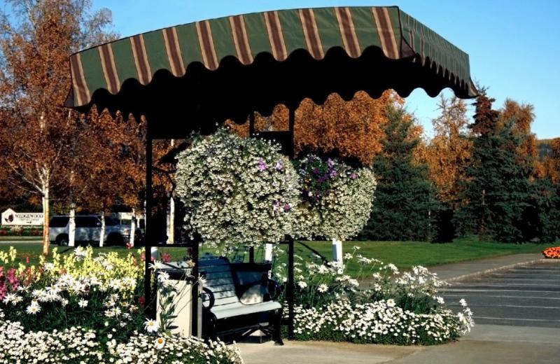 Garden bench at Bear Lodge.