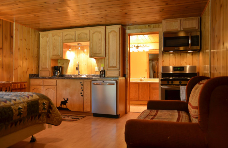 Cabin kitchenette at Shoshone Lodge & Guest Ranch.