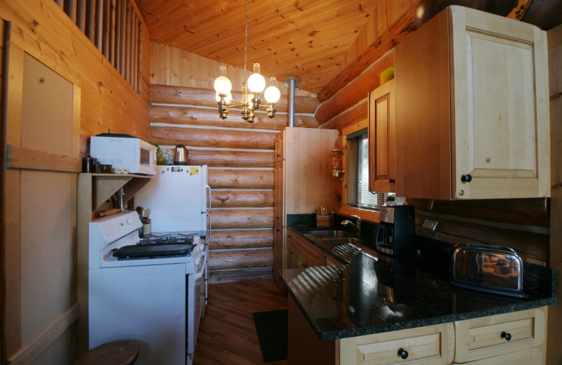 Cabin kitchen at Mt. Baker Lodging.