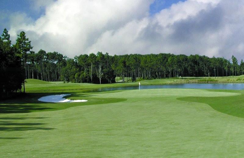 Golf near Gulf Shores Rentals.