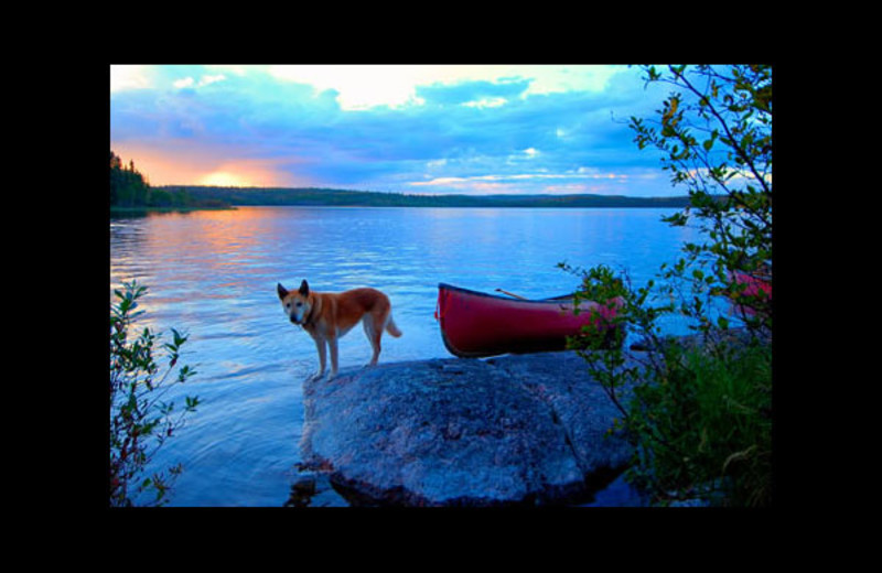 Canoe trips at Churchill River Canoe Outfitters.