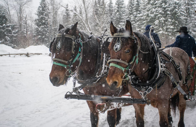 Sleigh ride at Lake Clear Lodge & Retreat.