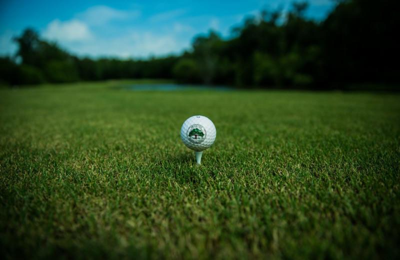 Golf near Oak Haven Resort.