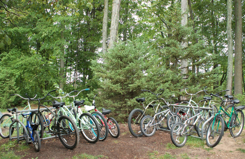Bikes at White Birch Lodge.