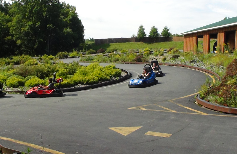 Go-Karts at Villa Roma Resort.