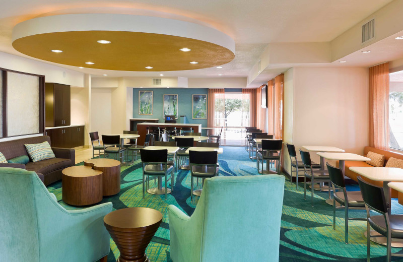 Lobby at SpringHill Suites Phoenix Metrocenter Mall/I-17.