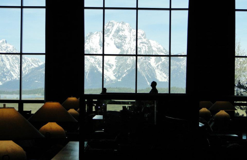 Beautiful views at Jackson Lake Lodge.