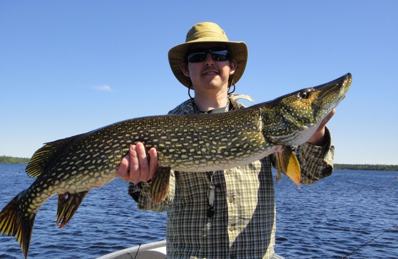 Fishing at Clark's Resorts & Outposts.