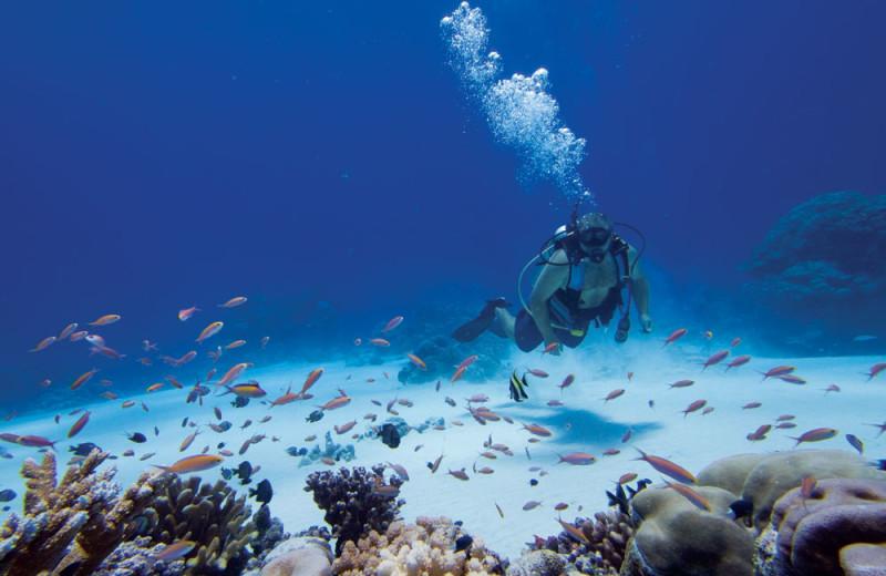 Diving at Kosrae Village Resort.