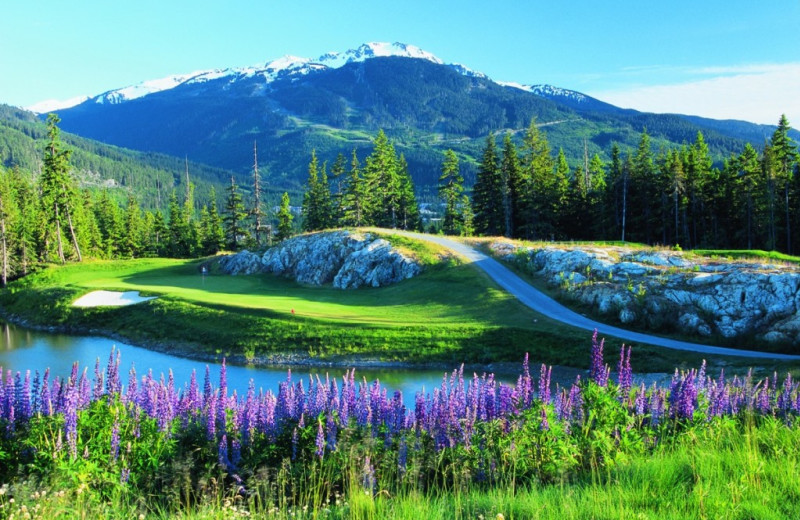 Golf course at Whistler Premier Resort Accommodations.
