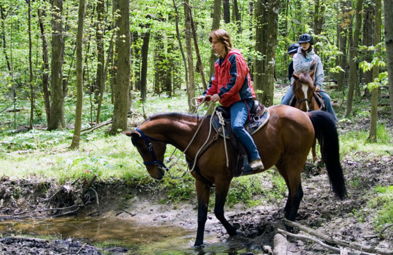 Horseback riding at Bear Paw Adventure.