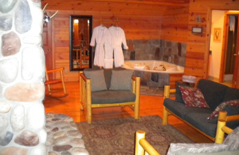 Cabin with a jacuzzi at Mountain Springs Lodge.