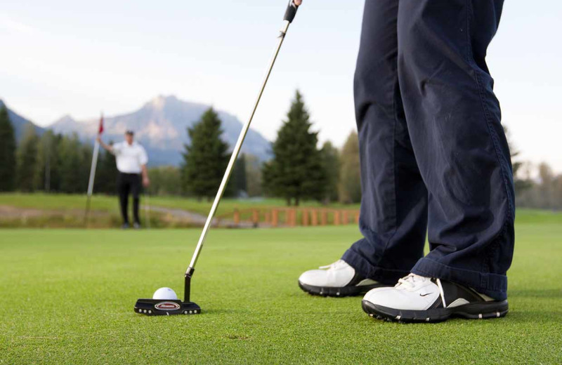 Golf near Fernie Central Reservations.
