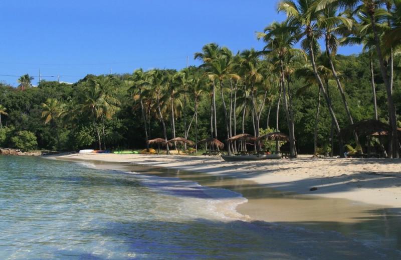 Beach at Virgin Islands Campground.