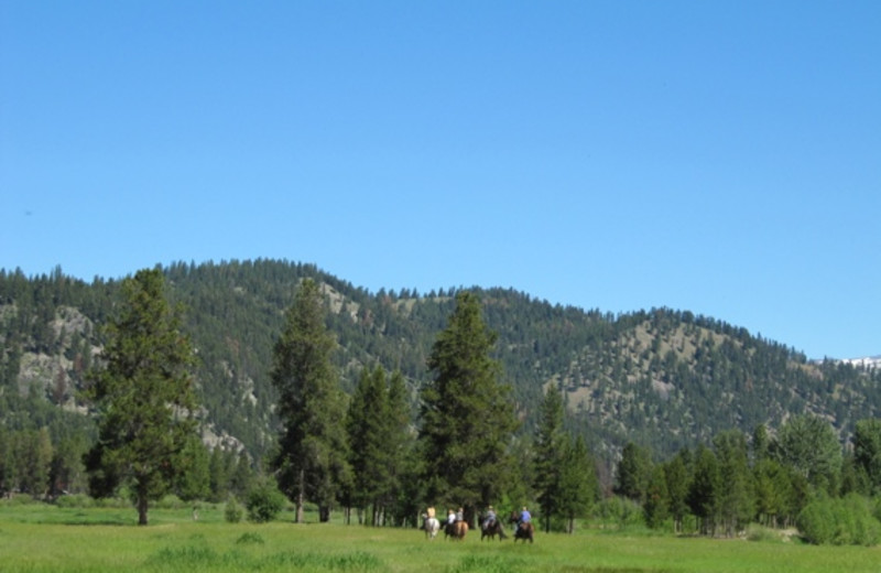 Horseback riding at Alta Ranch, LLC.