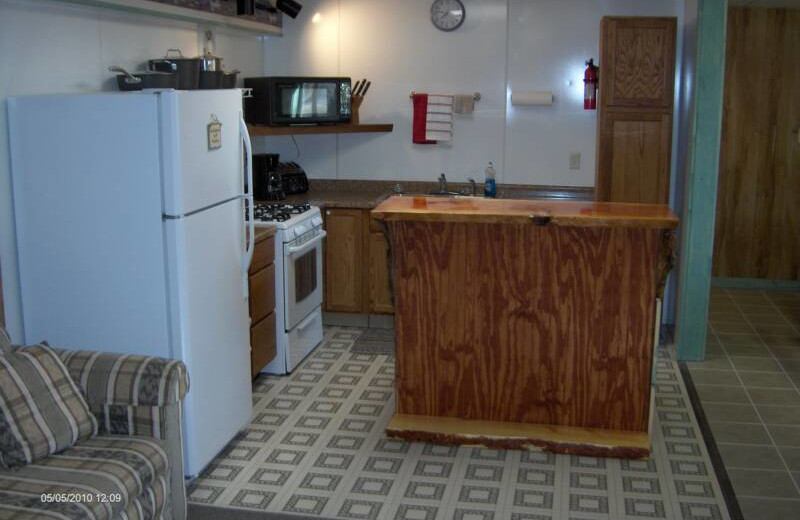 Cabin kitchen at Black Hills Cabins & Motel at Quail's Crossing.