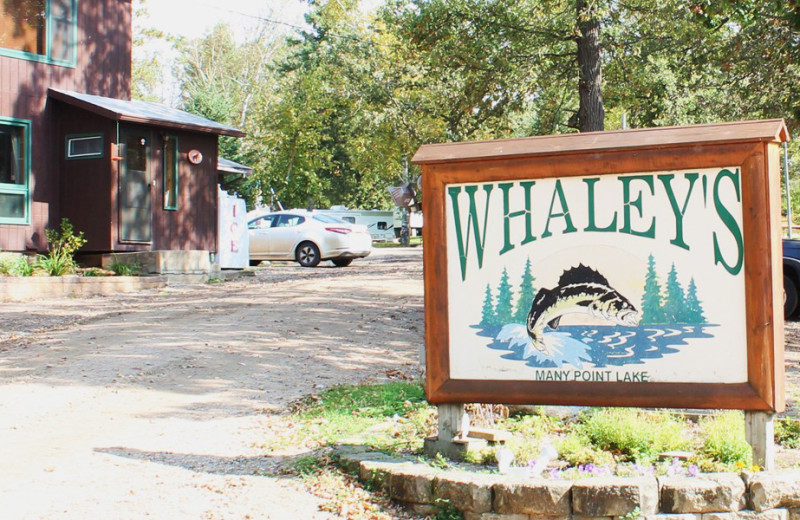 Welcome to Whaley's Resort & Campground.