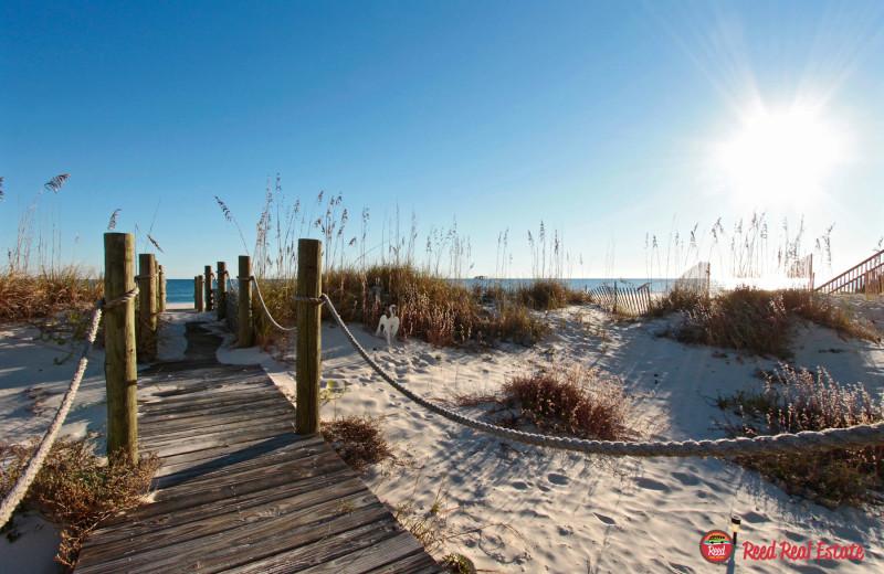 Beach at Reed Real Estate Vacation Rentals.