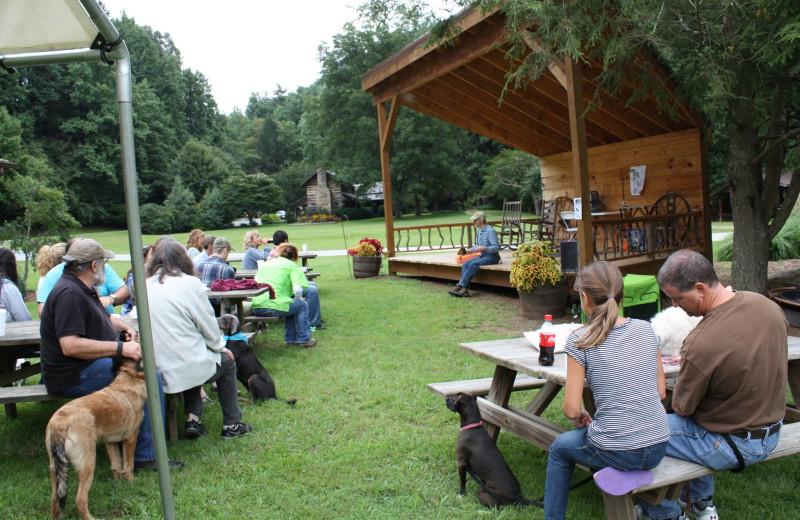 Pet training at Leatherwood Mountains Resort.