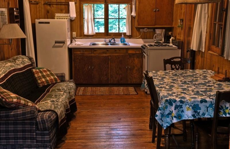 Cabin kitchen at Trout Lake Resort.