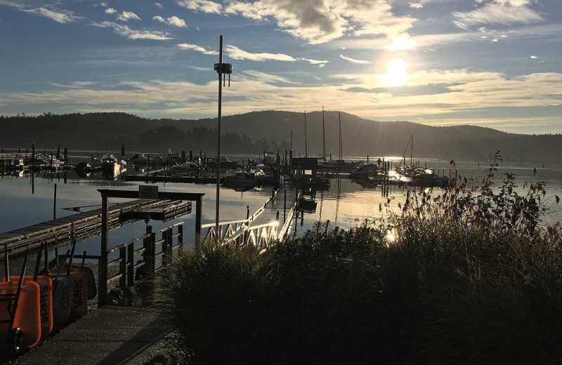 Marina at Sooke Harbour Resort & Marina.