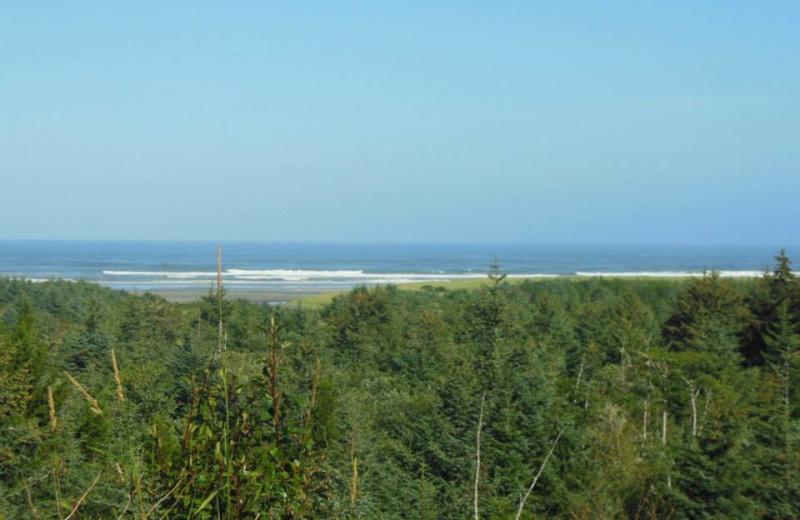 Beach view at Oceanfront Getaways.