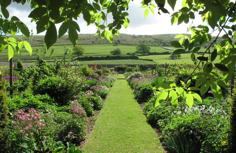 Garden at Longlands at Cartmel.
