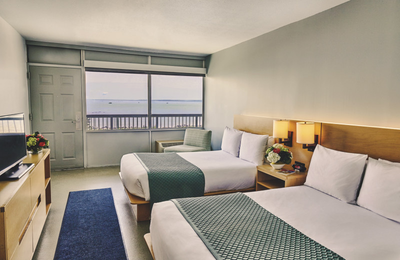 Guest room at Harbor Hotel Provincetown.