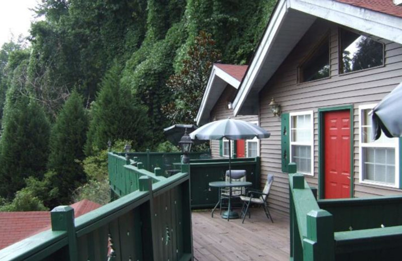 Exterior view of Black Forest Bed & Breakfast & Luxury Cabins.