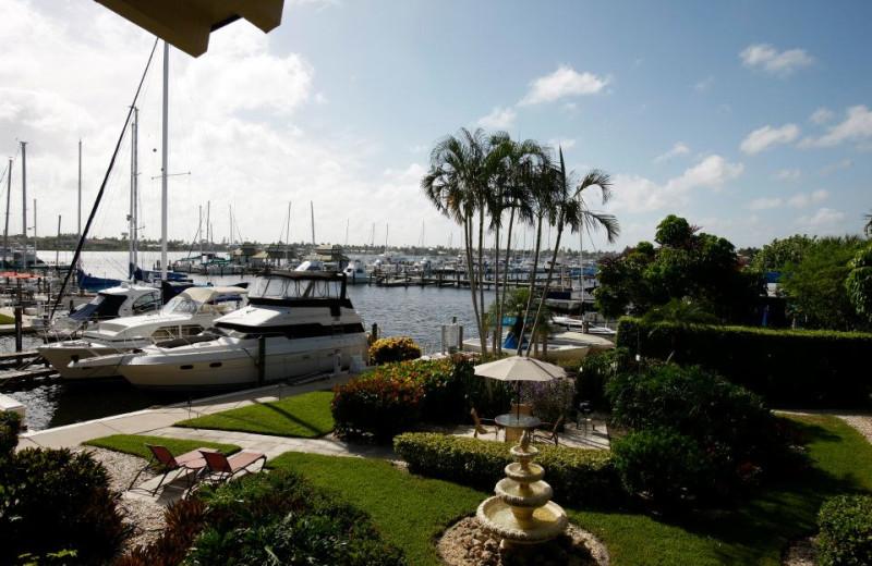 Marina at Cove Inn on Naples Bay.