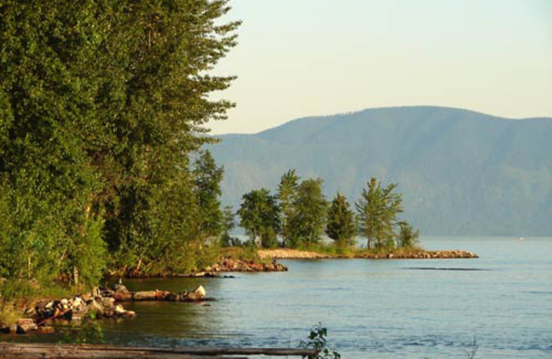 Area surrounding The Lodge at Sandpoint.