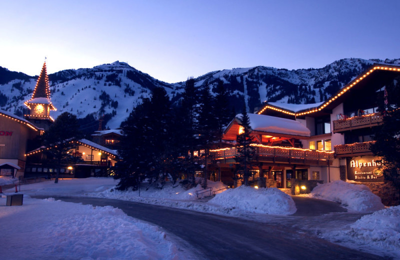 Holidays at Alpenhof Lodge.