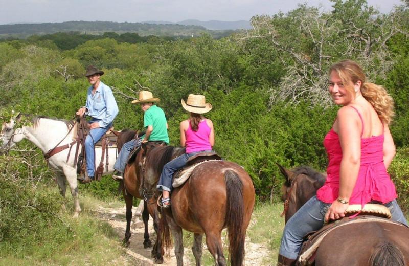Horseback riding trails at Twin Elm Ranch.