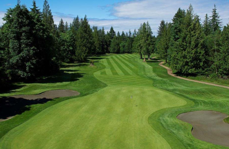 Golf at Sonora Resort and Conference Centre, Canada.