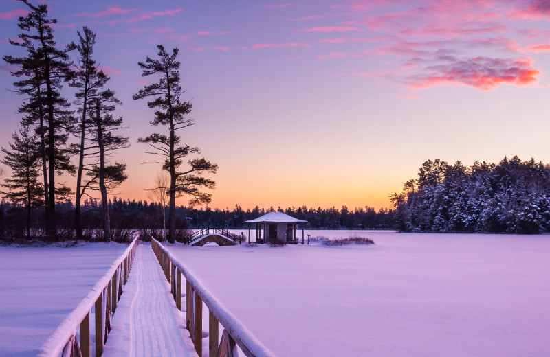 Winter at White Pine Camp.