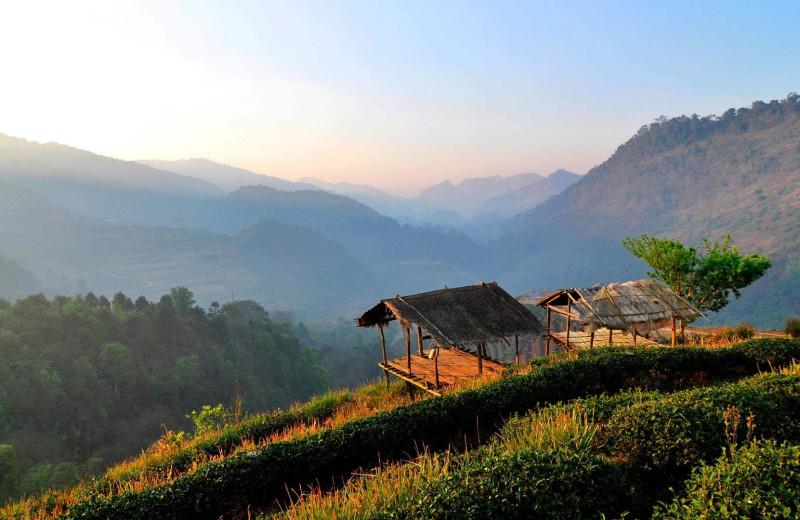 Mountain view at Angkhang Nature Resort.