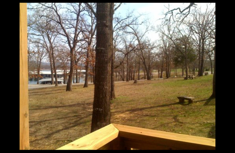 View from cabin at Lighthouse Lodge Resort.