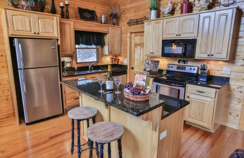 Rental kitchen at Wilderness View Cabins.