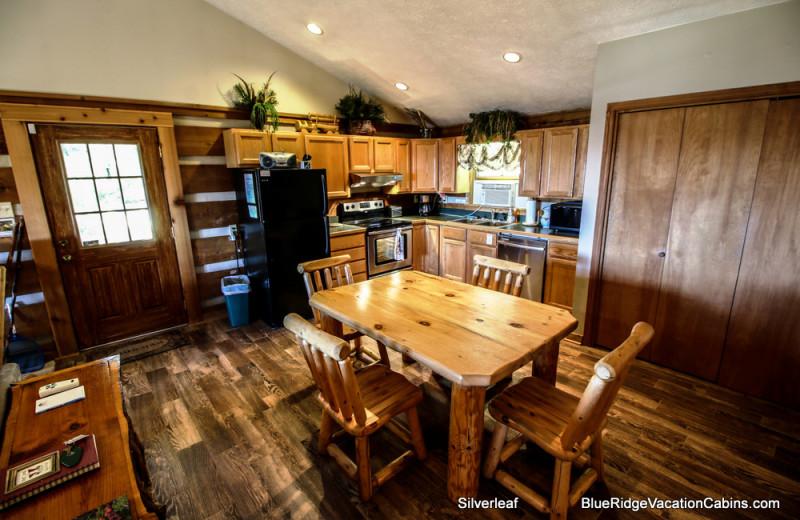 Cabin kitchen at Blue Ridge Vacation Cabins.