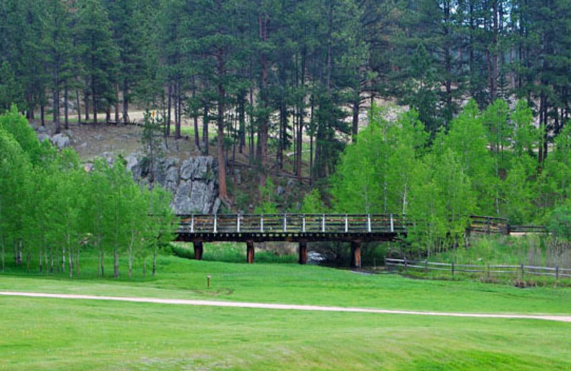 Bridge at Newton Fork Ranch.