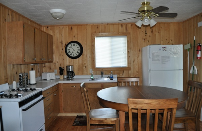 Cabin kitchen at Elm Haven Resort.