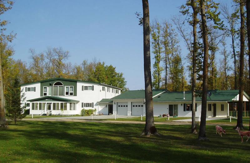 Exterior view of Wildwood Inn Bed & Breakfast.