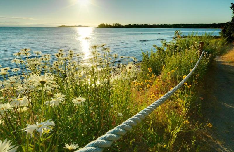View from Sunrise Ridge Waterfront Resort.