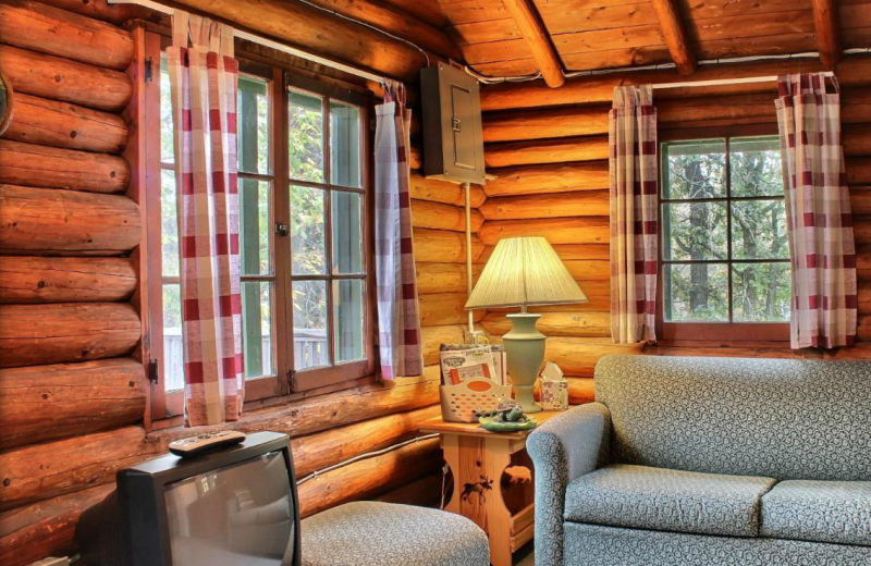 Cabin living room at Whaley's Resort & Campground.