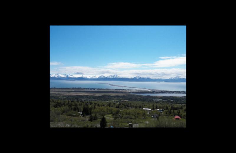 Scenic view at Sleepy Bear Cabins.