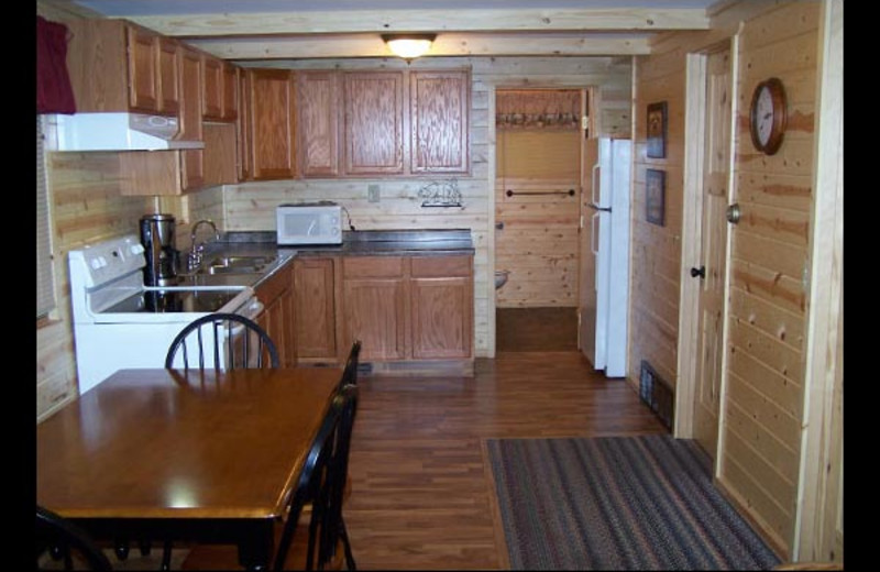 Cabin kitchen at Isle O' Dreams Lodge.