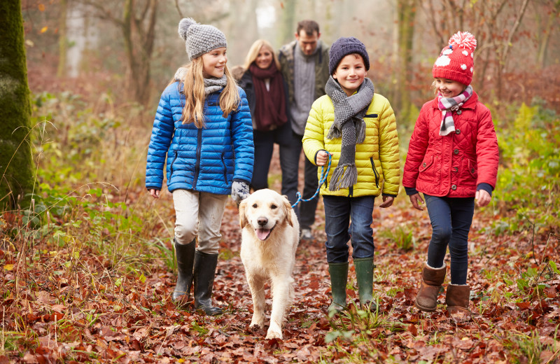 Pets welcome at Creeks Crossing Cabins.