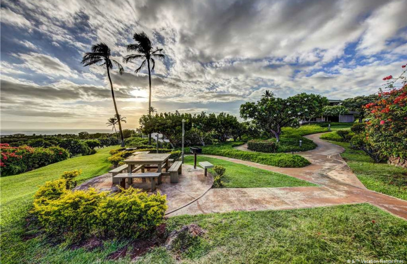 Rental grounds at Vacation Rental Pros - Maui.